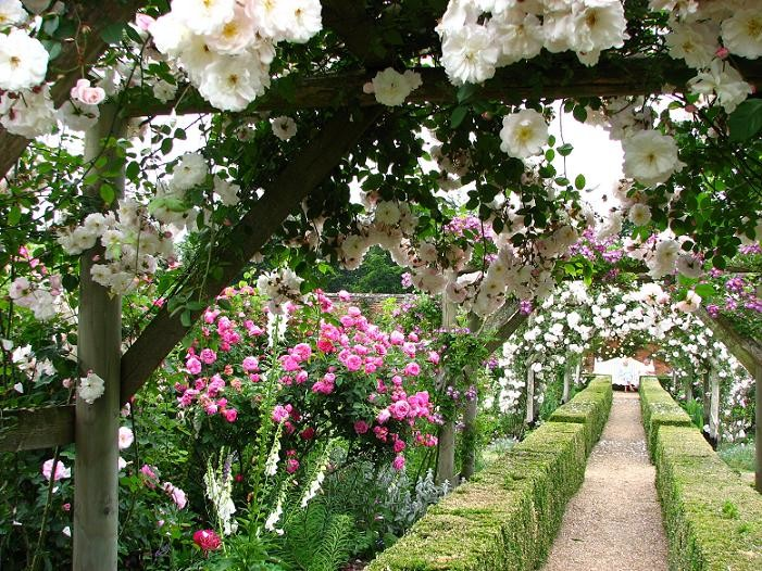 Michelmersh Manor Farm Mottisfont Rose Garden