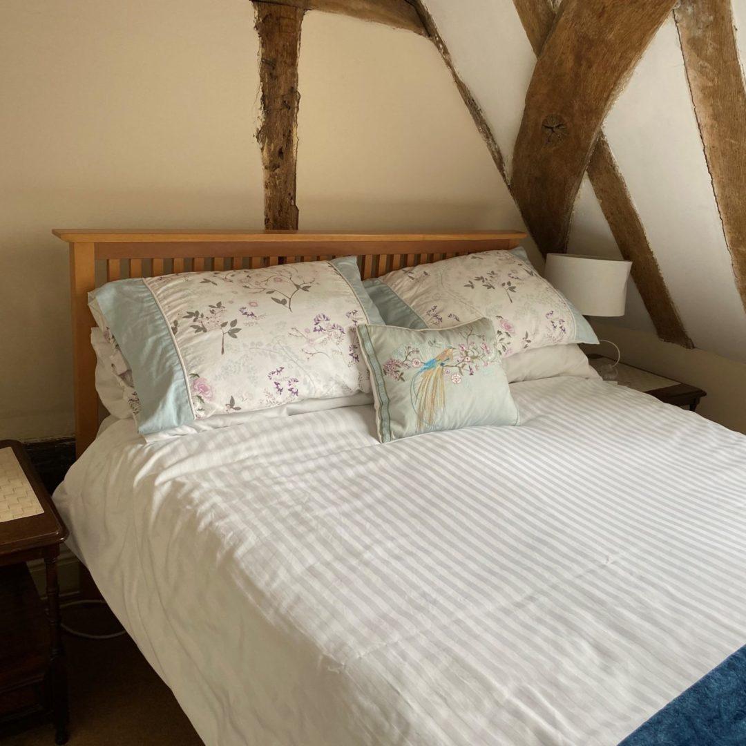 Foxglove bed 2